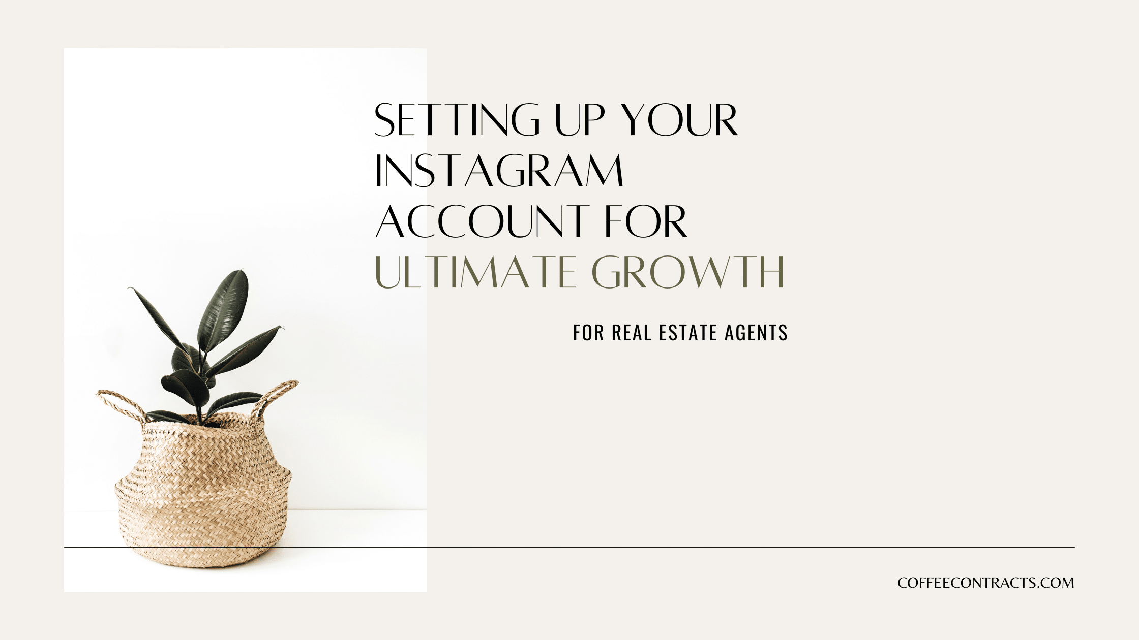 Setting up your instagram account for growth